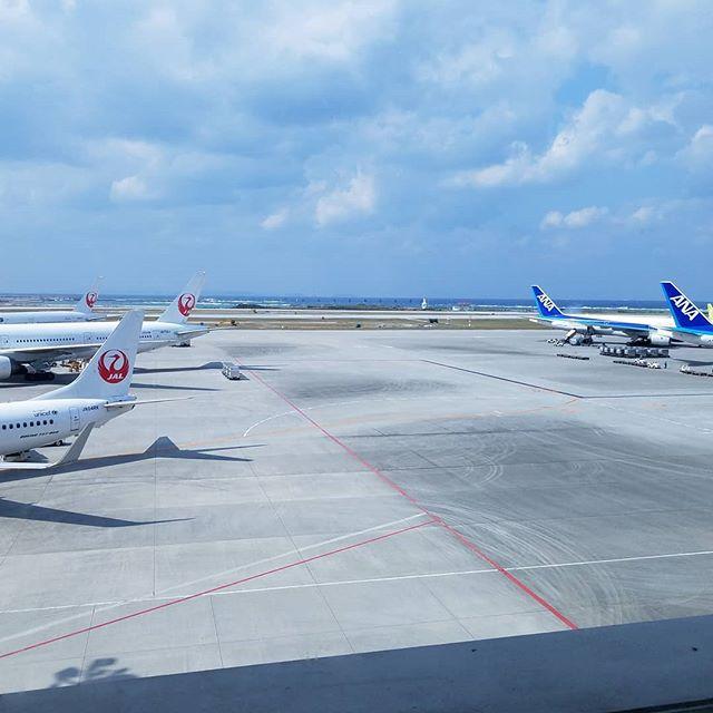 バイバイ沖縄(ヾ(´・ω・`)東京戻ります